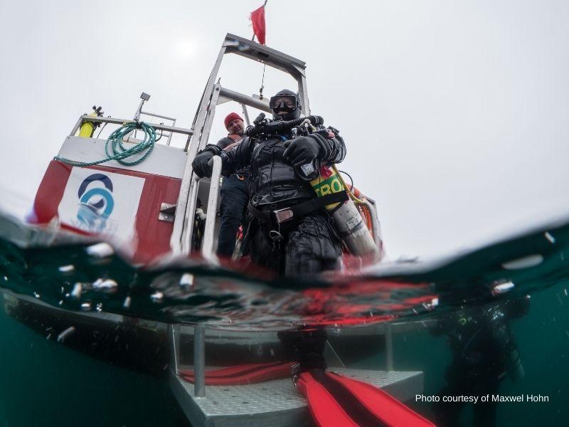 Diving-maxwell-Hohn