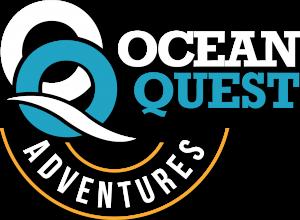 OQ-banner-logo-white