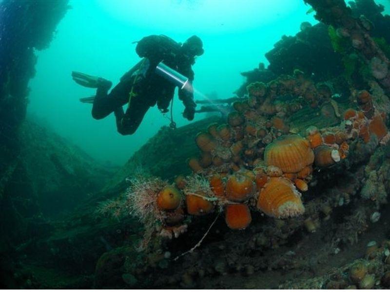 advanced-scuba-diving-course