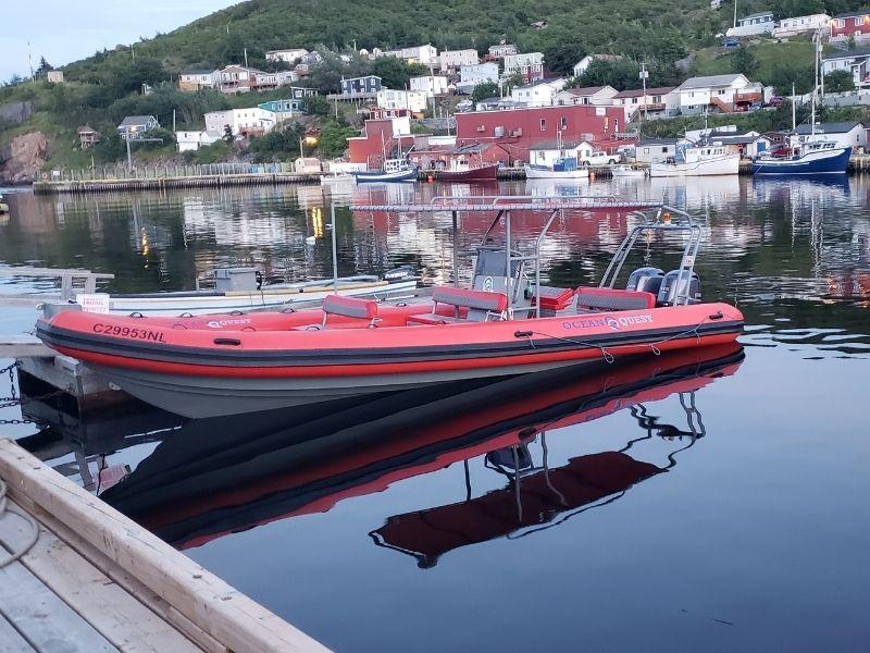 zodiac-boat-tour